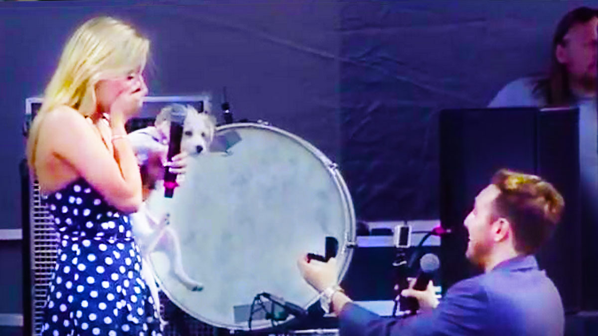 Kaleb Nation proposes to Taylor on stage at Digifest NYC 2014